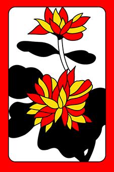 Сентябрь, Хризантема, 菊, kiku - простая, 1 очко